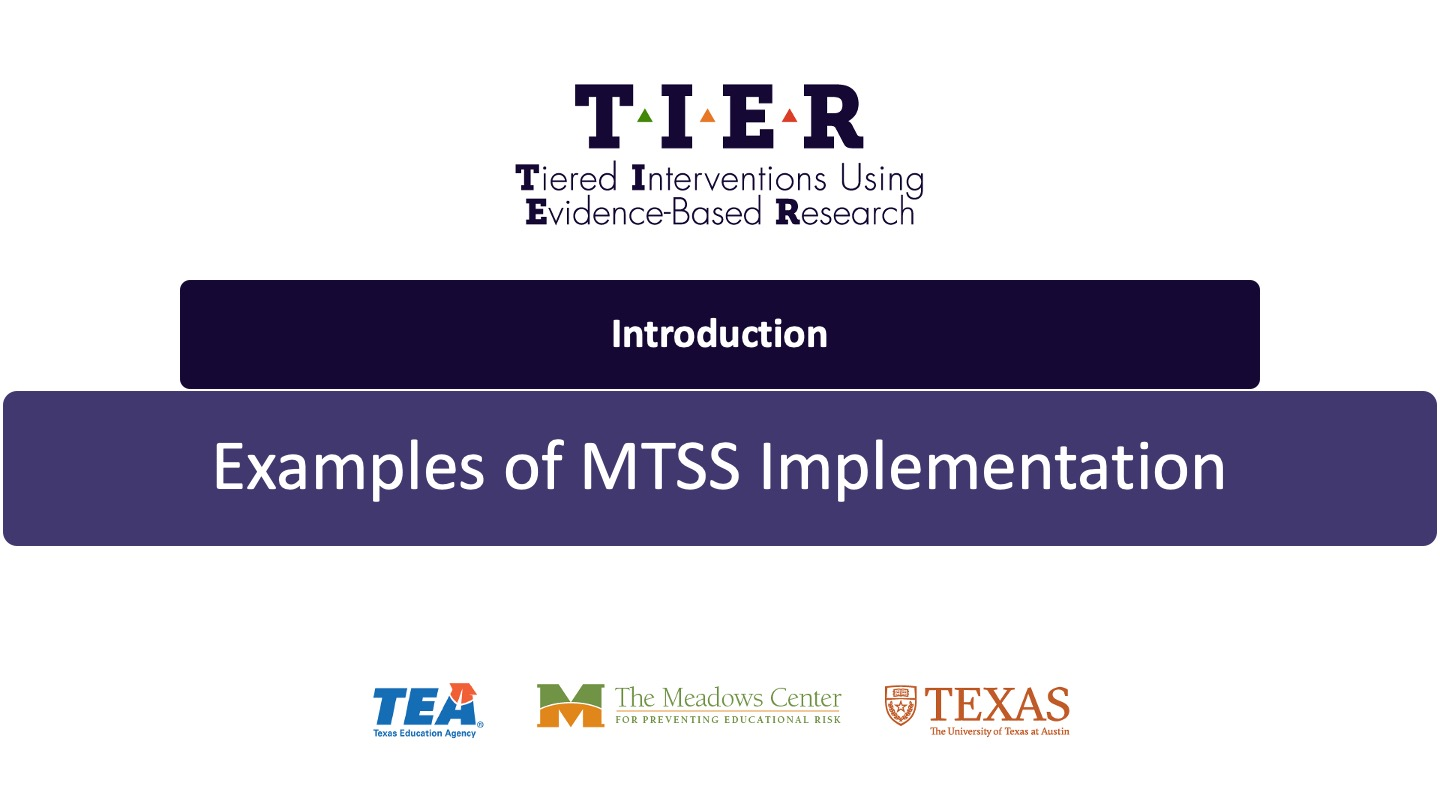 Examples of MTSS Implementation