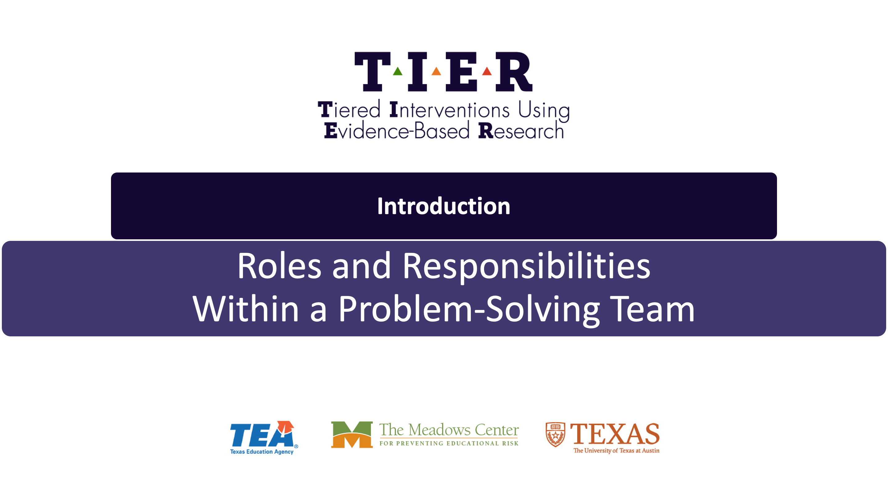 Roles and Responsibilities Within a Problem-Solving Team